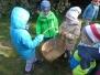 Zbieramy jabłuszka